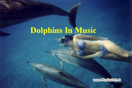 Relax.Ajad - Dolphins In Music