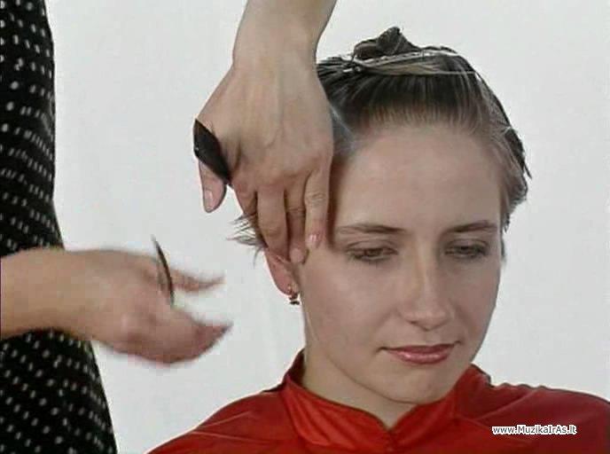 модные прически для начинающего парикмахера