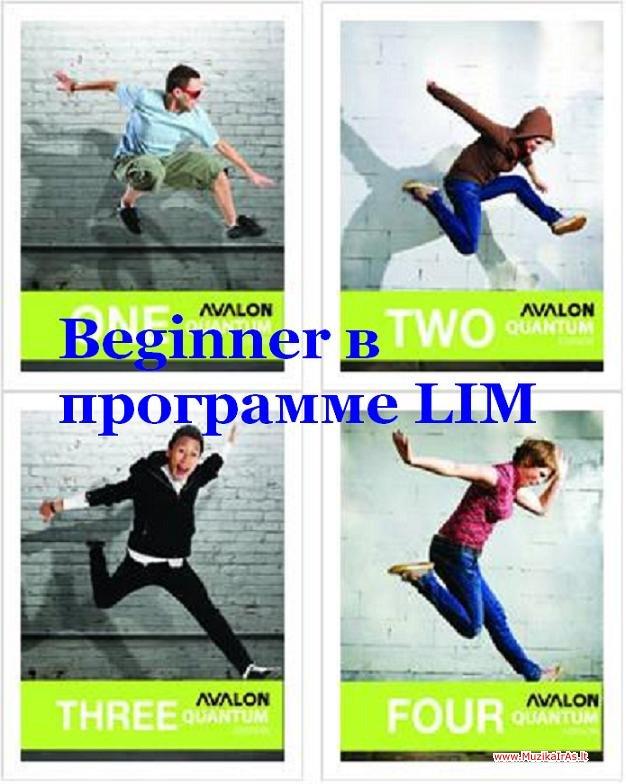Beginner в программе lim
