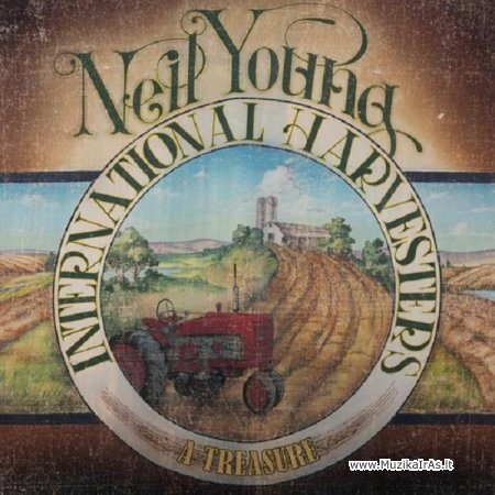 Neil Young / A Treasure