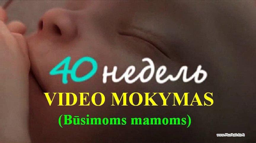 Беременность по неделям видеогид 40 недель