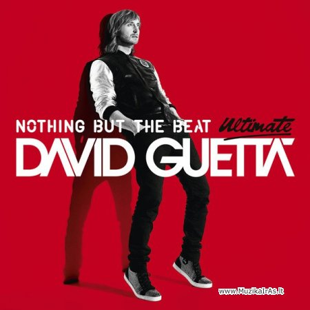 David Guetta / Nothing but the Beat: Ultimate