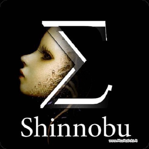 Shinnobu-The Enigma(10CD)